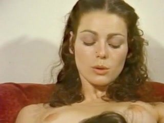 Annette Haven Paradigm